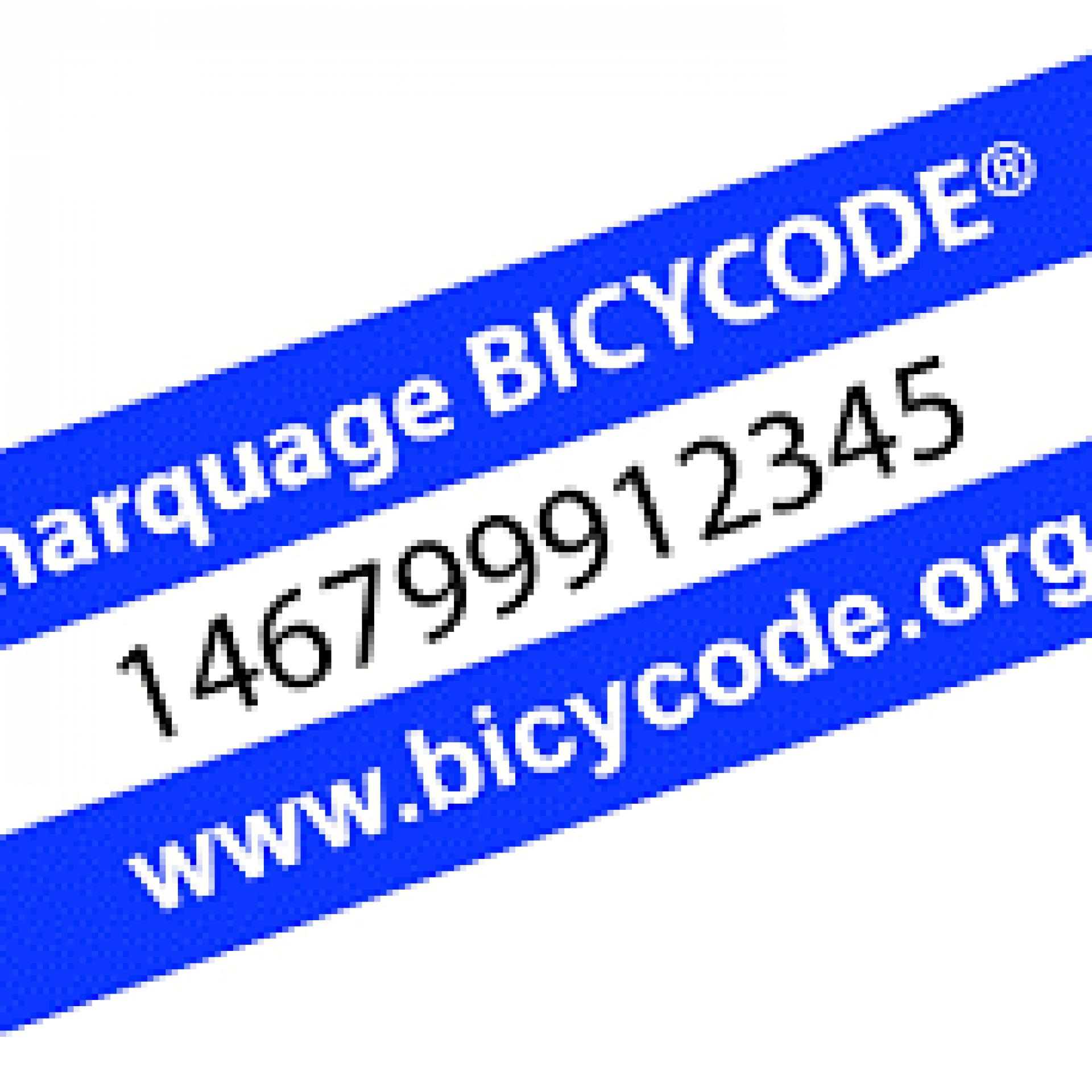 marquebycicode.jpg